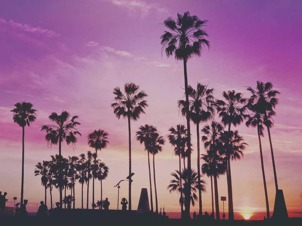 How to spend 3 days in Los Angeles - Venice Beach