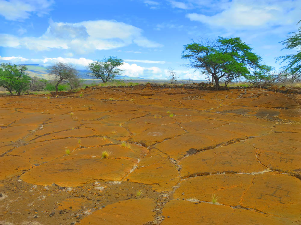 Along the Kona Coast you can find a few different sites that offer some serious archaeological and historic importance for Hawaiians. Both of these are definitely worth a couple of hours each as you can learn about Hawaiian history and actually see structures.