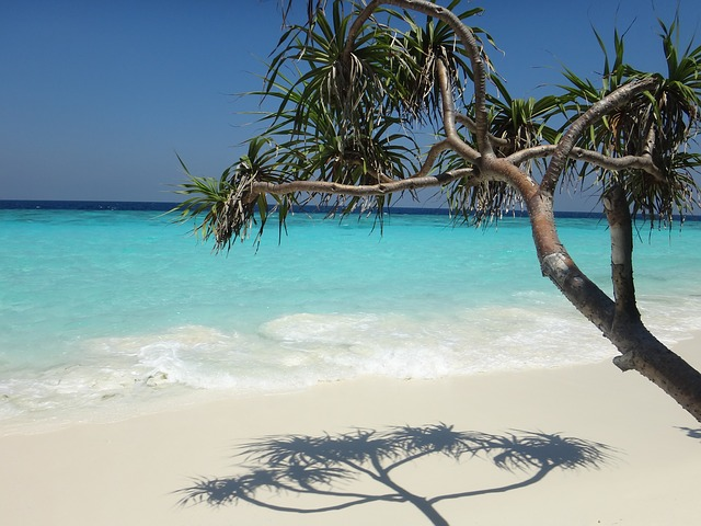 This is why a holiday in the Maldives is so sought after by everyday people